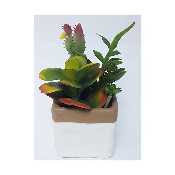 Gifty Biblo Çiçek 6872
